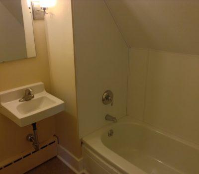 Bathtub and Small Sink
